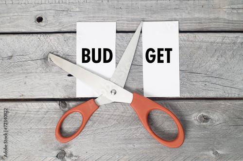 Budget cut concept Canvas Print
