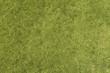 canvas print picture - Grass Texture