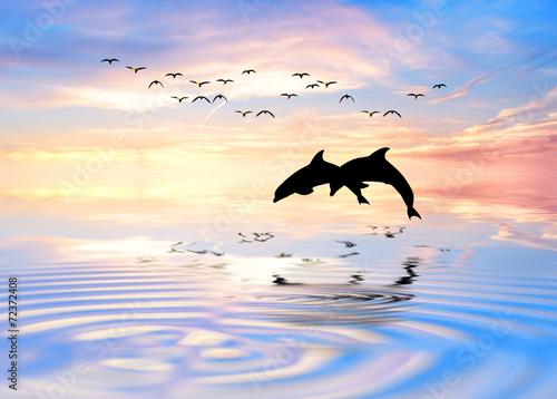 Keuken foto achterwand Dolfijn delfines en el horizonte