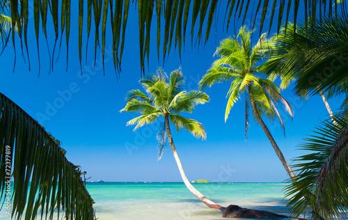 Poster Tropical beach Coconut Coast Idyllic Island