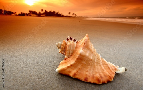 Praia Fototapet
