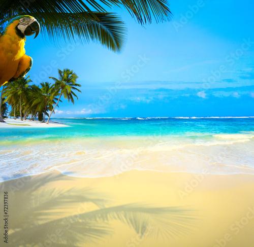 Art  beautiful Caribbean uninhabited tropical sea beach Fototapete