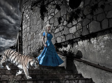 Fairy Tale With A Tiger On Old Tower Steps