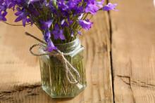 Small Field Of Purple Flowers, Bells Bouquet