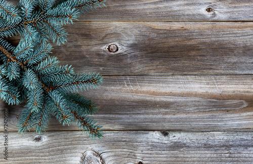 Fotografía  Christmas Tree on rustic wood