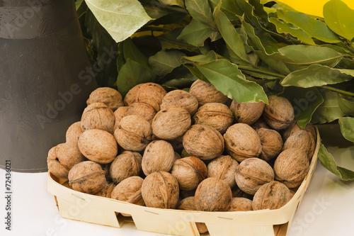 Spoed Foto op Canvas Baobab walnuts tasty