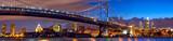 Fototapeta Most - Philadelphia skyline panorama at dusk, US