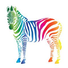 Fototapeta na wymiar Zebra color palette