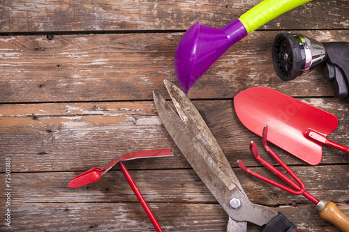 Foto op Plexiglas Retro Gardening tools over a wooden background
