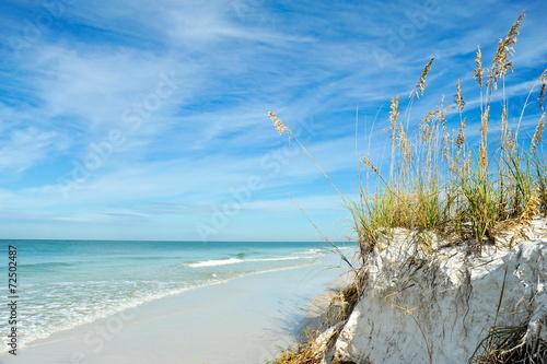 Fotografija Beautiful Florida Coastline