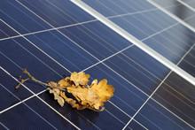 Solarmodule Im Herbst