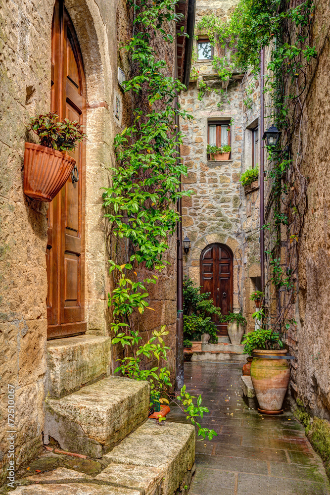 Fototapeta Alley in old town Pitigliano Tuscany Italy