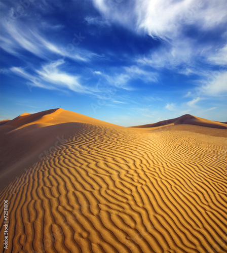 Foto op Canvas Zandwoestijn evening desert landscape