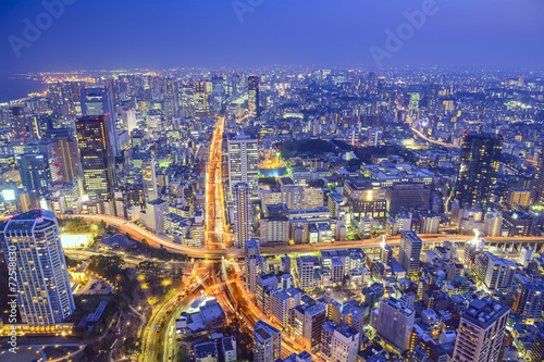 Photo sur Toile Europe Centrale Tokyo, Japan Cityscape and Highways