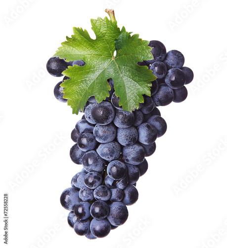 Fresh bunch of red wine Fototapete