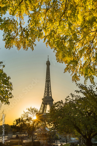 Printed kitchen splashbacks saison d'automne PARIS