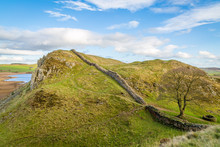 Hadrian's Wall Looking At The Famous Sycamore Gap