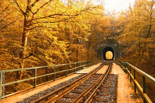 Poster Voies ferrées Railway in autumn forest