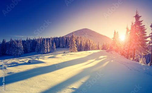 Poster Beige Beautiful winter landscape
