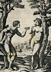 Fototapeta na wymiar Adam and Eve, Marcantonio Raimondi after a Raphael.