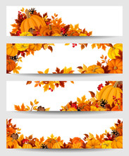Vector Banners With Orange Pum...