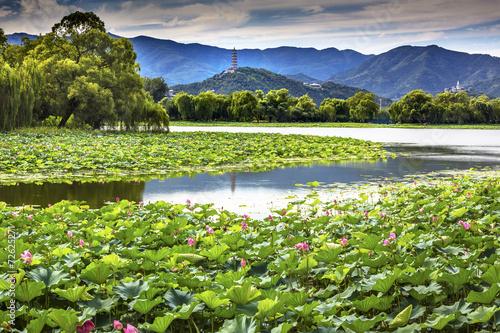 Photo Stands Beijing Yue Feng Pagoda Lotus Garden Summer Palace Beijing China