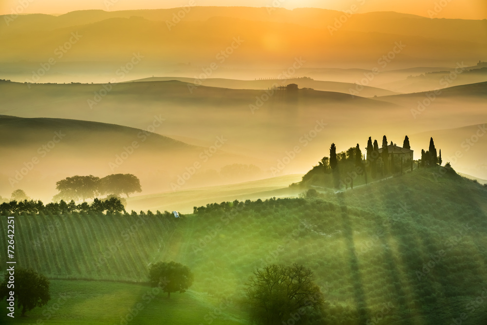 Fototapety, obrazy: Sunrise over the green fields in Tuscany