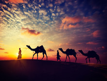 Two Cameleers With Camels In D...