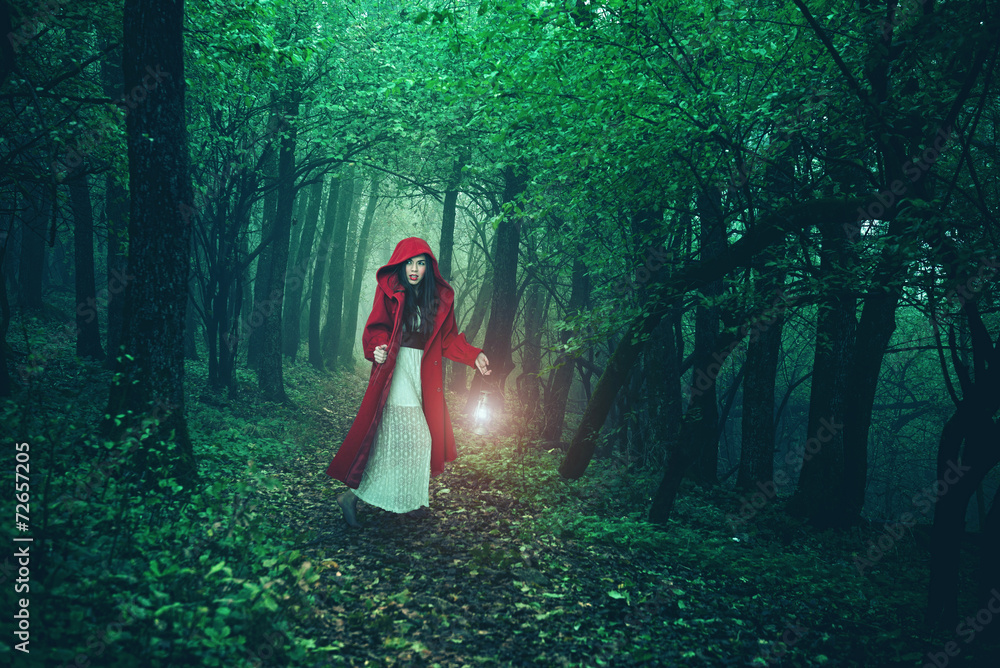 Fototapeta Little Red Riding Hood in the woods