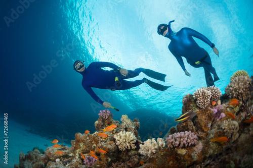 Valokuva  Freedivers