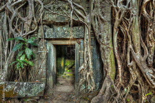 Poster Ruine Ancient stone door and tree roots, Ta Prohm temple, Angkor