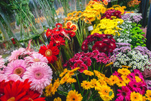 Colorful Flowers At Flower Market