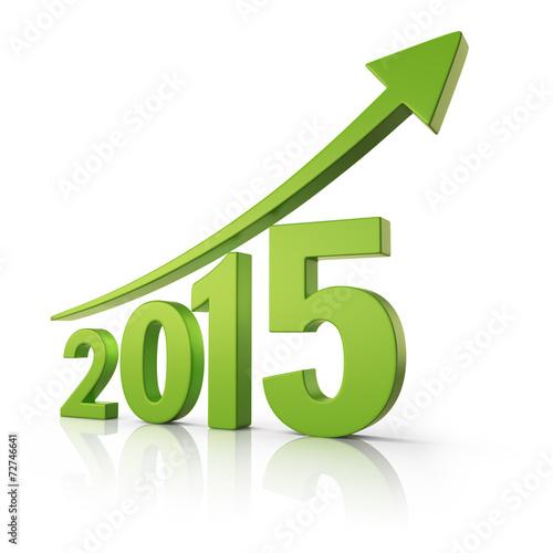 Fotografia  2015 Happy New Year