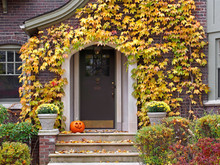Front Door With Colorful Ivy I...