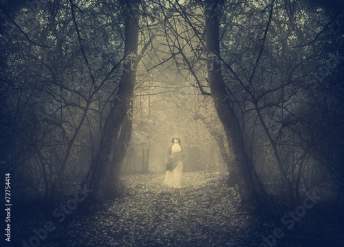 Fototapeta White ghost appears in the forest's mist
