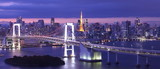 Fototapeta Most - view of Tokyo Bay , Rainbow bridge and Tokyo Tower landmark