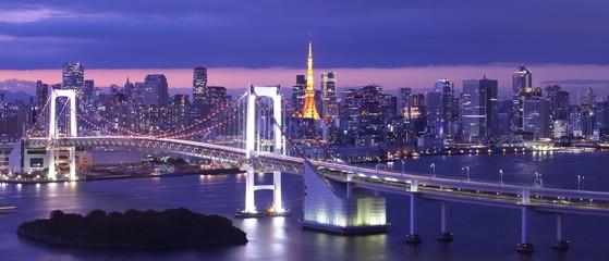 Fototapeta view of Tokyo Bay , Rainbow bridge and Tokyo Tower landmark