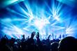 canvas print picture - Rock concert