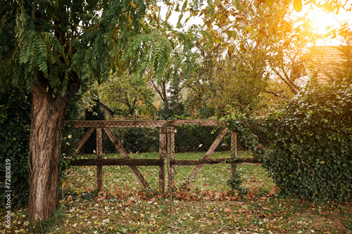 Fototapeta Wooden fence obraz na płótnie