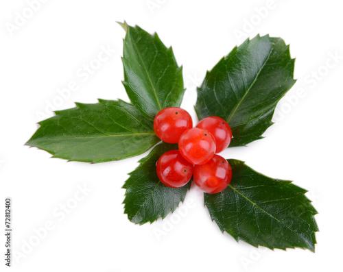 Fotografie, Obraz  Leaves of mistletoe with berries isolated on white