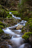 Smoothly flowing stream of water in the woods