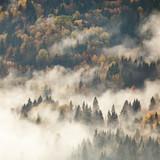 Widok mgliste mgieł góry w jesieni - 72842630