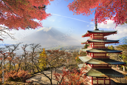 Fototapety, obrazy: Fuji Mountaion with nice maple