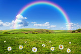 Fototapeta Rainbow - rainbow background