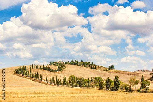 Wall Murals Melon Typical Tuscan road surrounded by cypress trees and fields in su