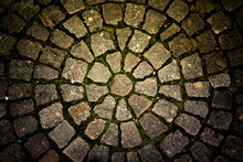 Paving Stone Laid Out Circles....