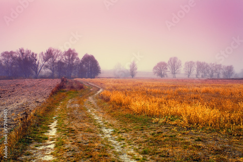 Foggy autumn landscape at sunrise