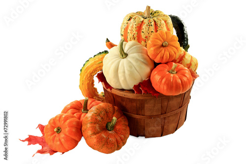 Fotografie, Obraz  Pumpkins and squashes Fall arrangement