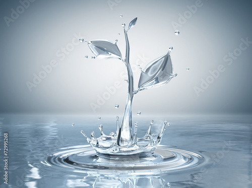 fototapeta na ścianę Water splash in form of plant