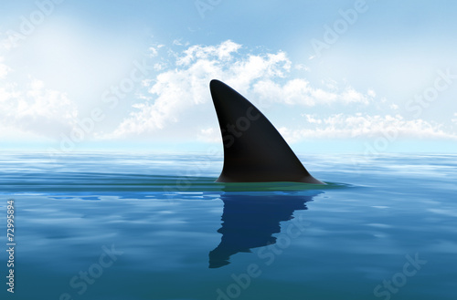 Shark fin above water Fototapet